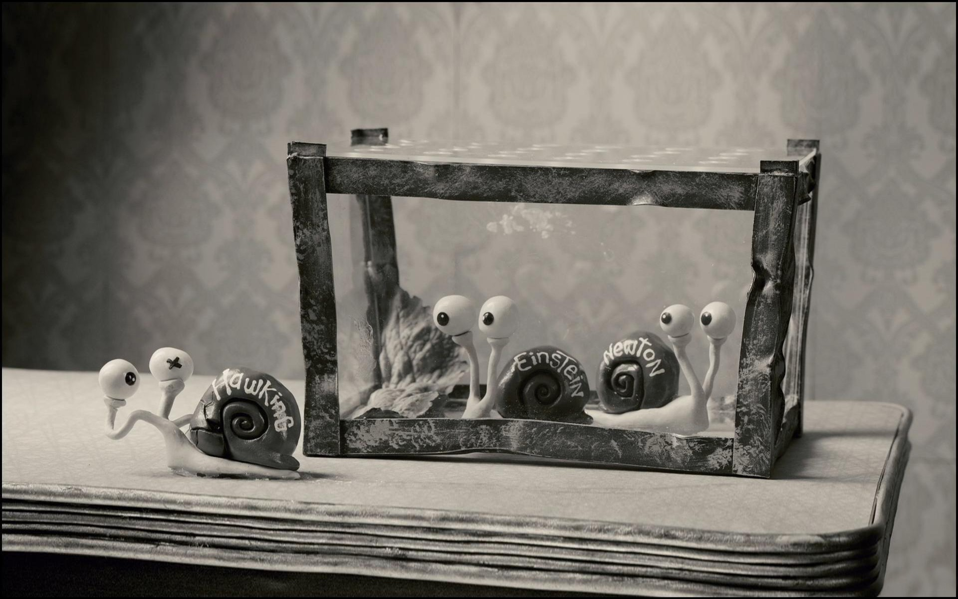 Movie Mary And Max Wallpaper Resolution 1920x1200 Id 108625 Wallha Com